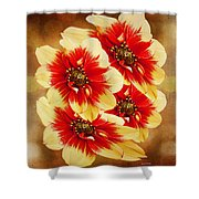 Flowers Of Flowers Shower Curtain