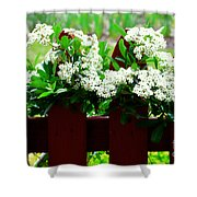 Flowers On Fence Shower Curtain