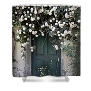 Flowers On The Door Shower Curtain