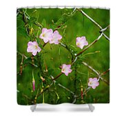Flowers... On The Fence Shower Curtain