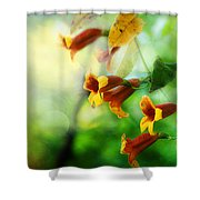 Flowers On The Vine Shower Curtain