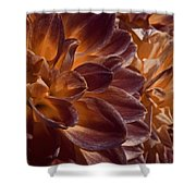 Flowers Should Also Turn Brown In Autumn Shower Curtain
