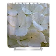 Snowball Flowers Shower Curtain