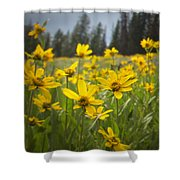Flowers That Are Wild Shower Curtain