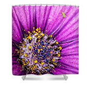 Flowers Within A Flower Shower Curtain