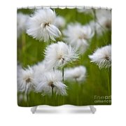 Flowery Cotton Shower Curtain
