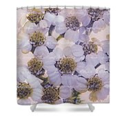 Flowery Greetings Shower Curtain