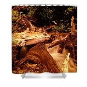 Flowing Betwixed Old Wood Near Mt St Helens Shower Curtain