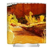 Flowing From Capital Reef Shower Curtain