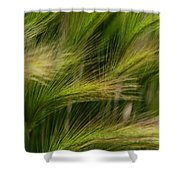 Flowing Grasses Shower Curtain