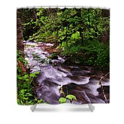 Flowing Through The Forest Shower Curtain