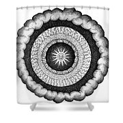Fludds Cosmic Realms 1617 Shower Curtain