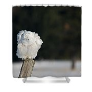 Fluffing Feathers Shower Curtain