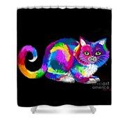 Fluffy Rainbow Cat 2 Shower Curtain