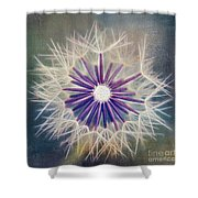 Fluffy Sun - 9bt2a Shower Curtain by Variance Collections