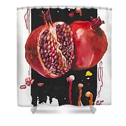 Fluidity 8 - Elena Yakubovich Shower Curtain