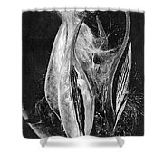 Fly Away Seeds Shower Curtain