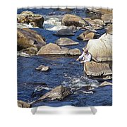 Fly Fishing On Mountain River Shower Curtain
