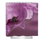 Fly On A Rhododendron Shower Curtain