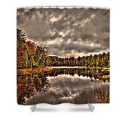 Fly Pond Marsh II Shower Curtain