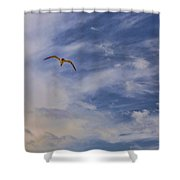 Fly To Your Tomorrow Shower Curtain