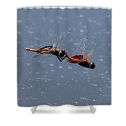 Togetherness Fly United 7 Shower Curtain
