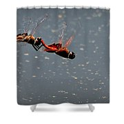 Fly United Shower Curtain