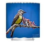 Flycatcher Shower Curtain