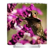 Flying At Attention Shower Curtain