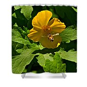 Flying Bee And Wood Poppy Shower Curtain
