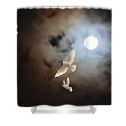 Flying By Moonlight Shower Curtain
