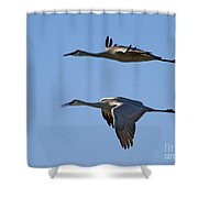 Flying Close Shower Curtain