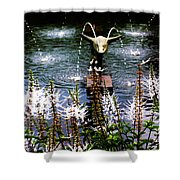 Flying Dolphins Shower Curtain