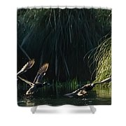 Flying Ducks Shower Curtain