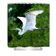 Flying Egret Closeup Shower Curtain