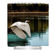 Flying Egret Shower Curtain by Robert Bales