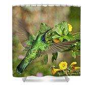 Flying Green Violetear Shower Curtain