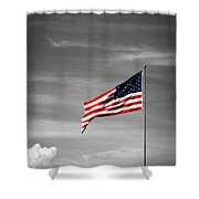Flying High 6 Shower Curtain