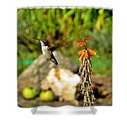 Flying Hummingbird Shower Curtain
