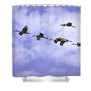 Flying In Formation Shower Curtain