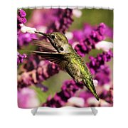 Flying In Lunch Shower Curtain