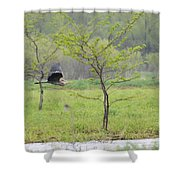 Flying Low Shower Curtain