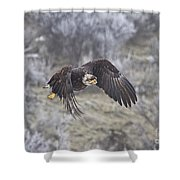 Flying Low Shower Curtain by Mike  Dawson
