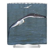 Flying On A Breeze Shower Curtain