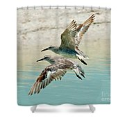 Flying Pipers Shower Curtain
