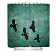 Flying Ravens Shower Curtain