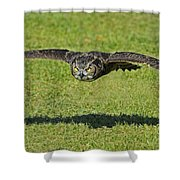 Flying Tiger... Shower Curtain