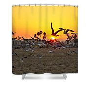 Flying To The Rising Sun Shower Curtain