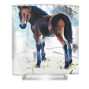 Foal Painting Shower Curtain