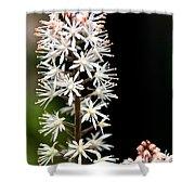 Foam Flower Shower Curtain